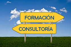 Formación y consultoría